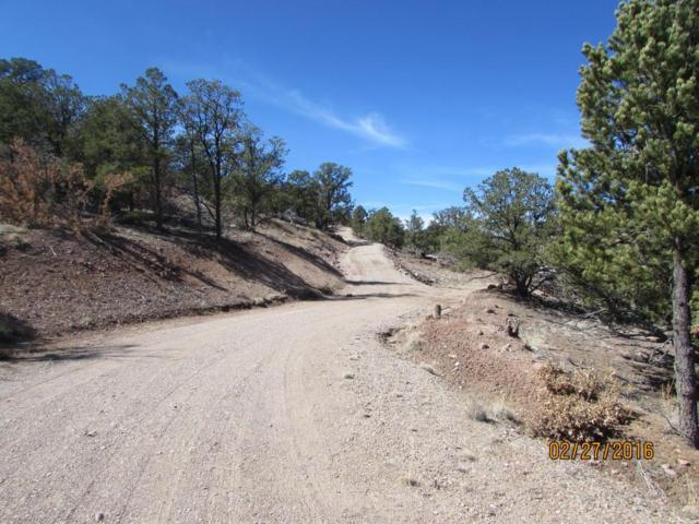 28 Log Cabin Road, Datil, NM 87821 (MLS #890777) :: Campbell & Campbell Real Estate Services
