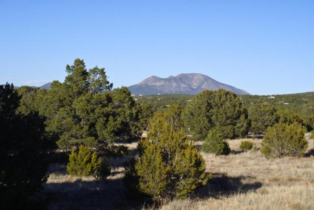 19 Coyote Canyon Trail, Tijeras, NM 87059 (MLS #891008) :: Will Beecher at Keller Williams Realty