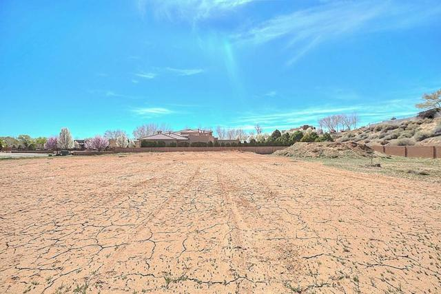 9419 Black Farm Lane NW, Albuquerque, NM 87114 (MLS #891742) :: Your Casa Team