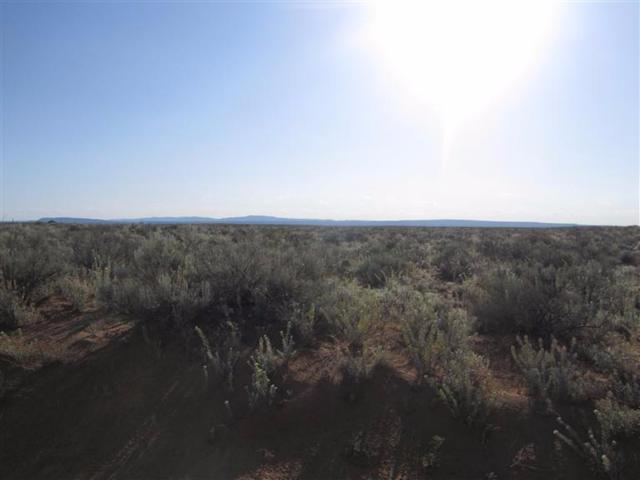 Quintana Road, Los Lunas, NM 87031 (MLS #891827) :: The Bigelow Team / Realty One of New Mexico
