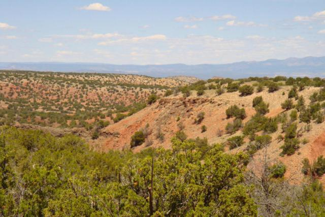 96 Sandstone Trail, Sandia Park, NM 87047 (MLS #891996) :: Will Beecher at Keller Williams Realty