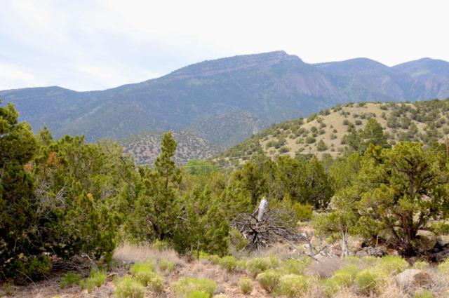 3A Juniper Road, Placitas, NM 87043 (MLS #893259) :: Campbell & Campbell Real Estate Services