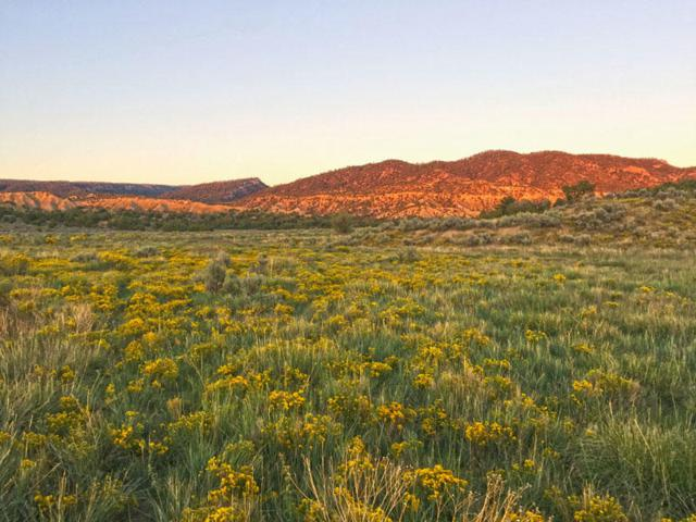 0 San Pablo Road, Cuba, NM 87013 (MLS #893274) :: Campbell & Campbell Real Estate Services