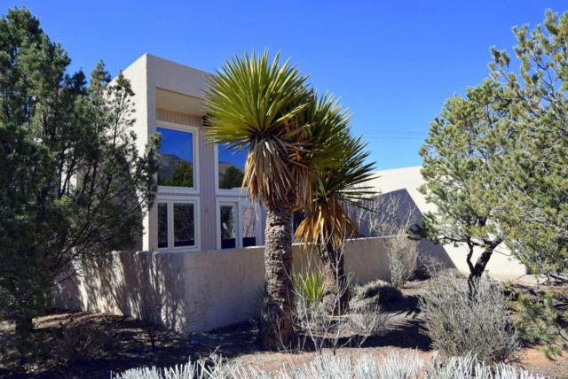 1921 Quail Run Drive NE, Albuquerque, NM 87122 (MLS #893306) :: Your Casa Team