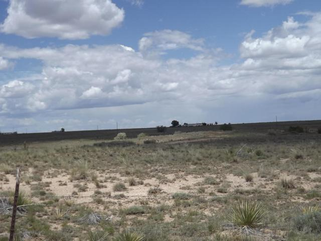 Martinez, Moriarty, NM 87035 (MLS #893953) :: Campbell & Campbell Real Estate Services