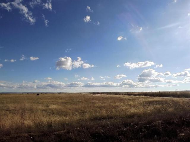 Tract 123 Marshall Road, McIntosh, NM 87032 (MLS #894008) :: The Buchman Group