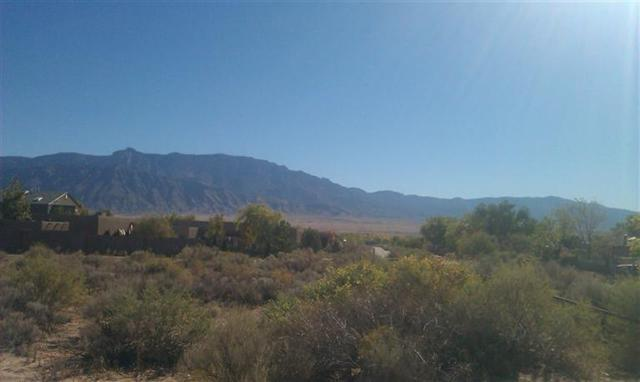Lot 55 Sagebrush Drive, Corrales, NM 87048 (MLS #894064) :: Rickert Property Group