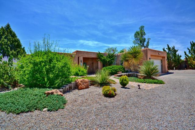 1101 Alamos Road, Corrales, NM 87048 (MLS #894124) :: Rickert Property Group