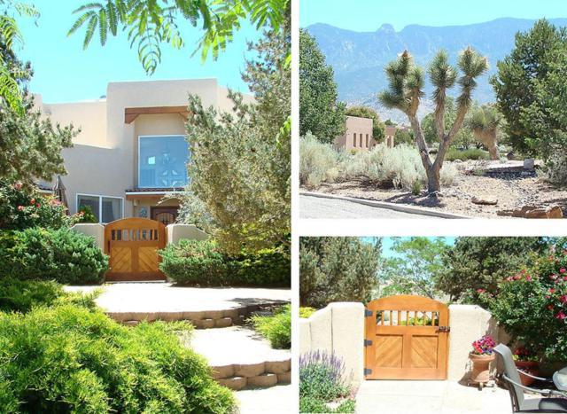 7620 Beverly Hills Avenue NE, Albuquerque, NM 87122 (MLS #894298) :: Your Casa Team
