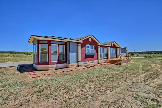47 Alley Road, Tijeras, NM 87059 (MLS #894428) :: Campbell & Campbell Real Estate Services
