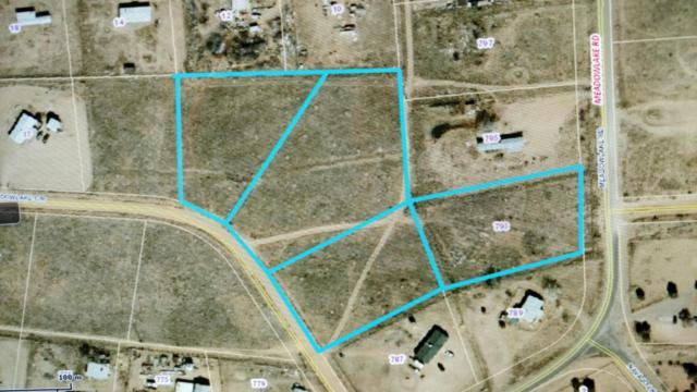 793 Meadowlake Road, Los Lunas, NM 87031 (MLS #894521) :: Campbell & Campbell Real Estate Services