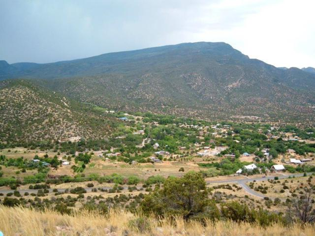 Algodon Lane, Placitas, NM 87043 (MLS #894550) :: Rickert Property Group