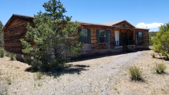 491 New Mexico 217, Tijeras, NM 87059 (MLS #894620) :: Your Casa Team
