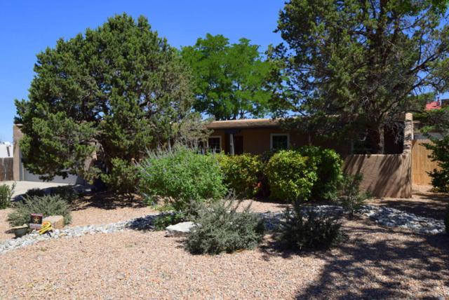 801 Sagebrush Trail SE, Albuquerque, NM 87123 (MLS #894673) :: Your Casa Team