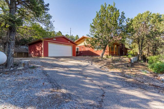 55 Tablazon Road, Tijeras, NM 87059 (MLS #894858) :: Your Casa Team