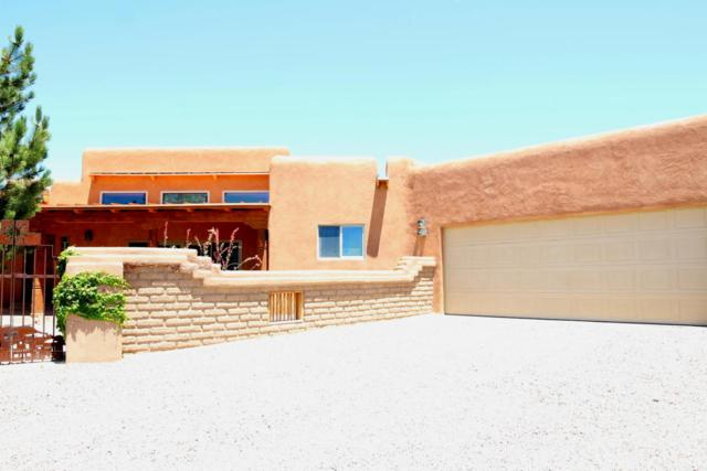 6 Ariel Court, Placitas, NM 87043 (MLS #894892) :: Rickert Property Group
