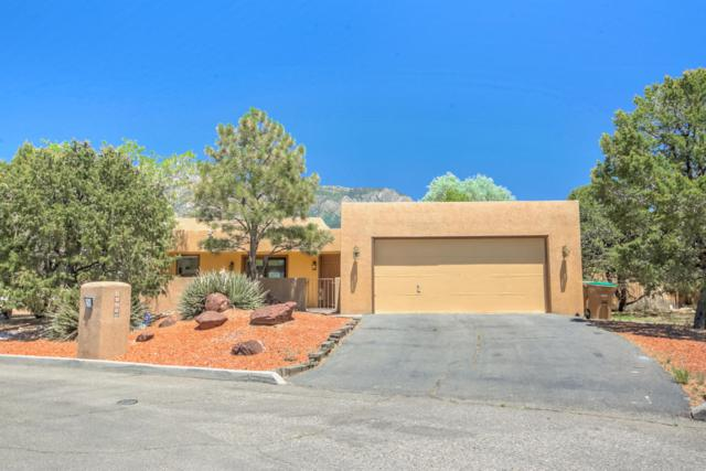 2020 Quail Run Drive NE, Albuquerque, NM 87122 (MLS #894974) :: Your Casa Team