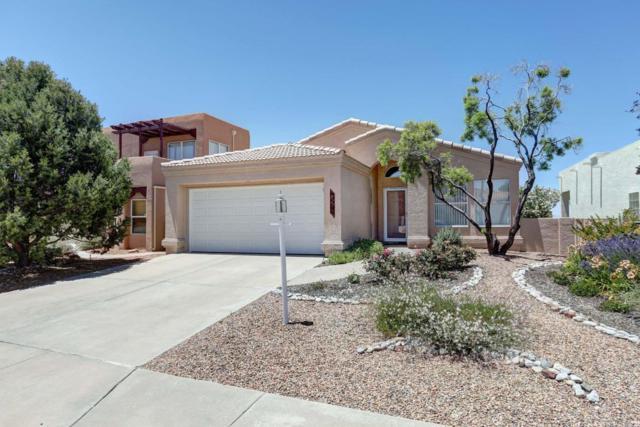 927 Calle Coronado SE, Albuquerque, NM 87123 (MLS #894990) :: Your Casa Team