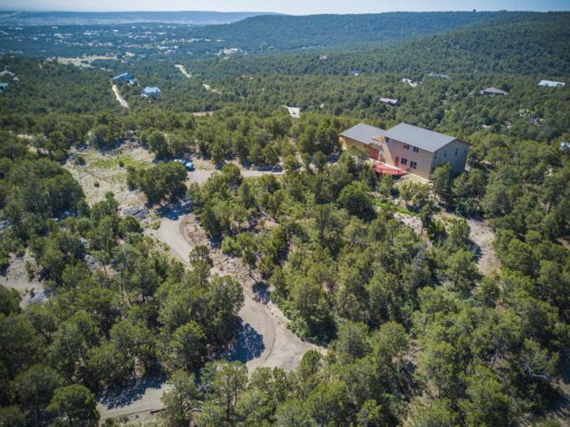 5 Steeplechase Court, Tijeras, NM 87059 (MLS #895041) :: Your Casa Team