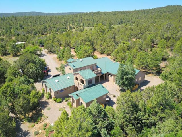 29 Upper Juan Tomas Road, Tijeras, NM 87059 (MLS #895055) :: Your Casa Team