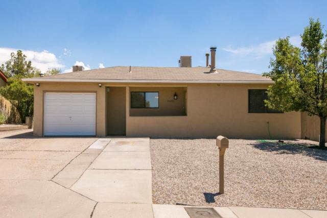 14204 Mel Smith Road NE, Albuquerque, NM 87123 (MLS #895138) :: Your Casa Team