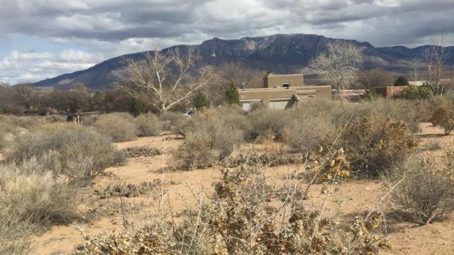 1310 W La Entrada, Corrales, NM 87048 (MLS #895145) :: Rickert Property Group