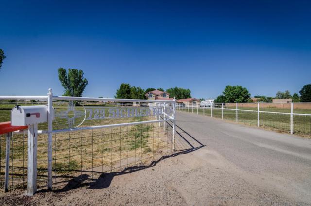 729 Sichler Road SW, Los Lunas, NM 87031 (MLS #895158) :: Rickert Property Group