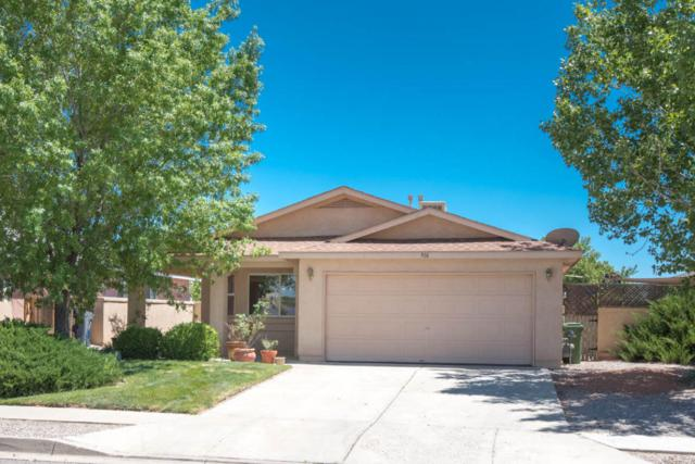 916 Somerset Meadows Drive NE, Rio Rancho, NM 87144 (MLS #895226) :: Rickert Property Group