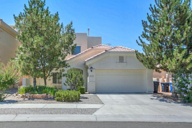 8824 Palomar Avenue NE, Albuquerque, NM 87109 (MLS #895291) :: Rickert Property Group