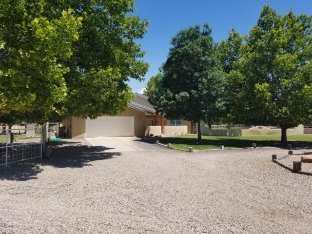 260 Del Norte Court, Bosque Farms, NM 87068 (MLS #896810) :: Rickert Property Group