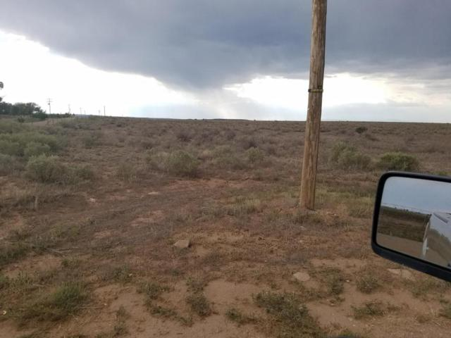 13 Windy Road, Moriarty, NM 87035 (MLS #896931) :: Campbell & Campbell Real Estate Services