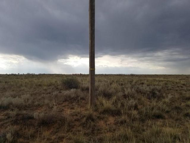 Windy Road, Moriarty, NM 87035 (MLS #896932) :: Campbell & Campbell Real Estate Services