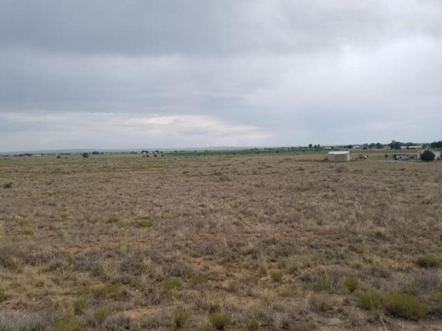Windy Road, Moriarty, NM 87035 (MLS #896933) :: Campbell & Campbell Real Estate Services
