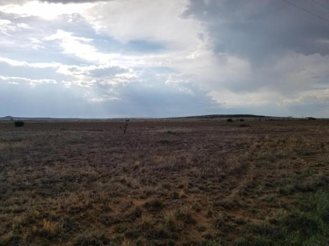 Plains, Moriarty, NM 87035 (MLS #896937) :: Campbell & Campbell Real Estate Services
