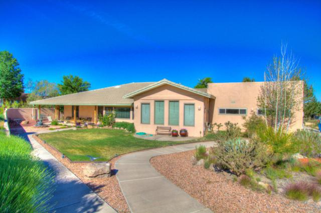 513 Roadrunner Lane NE, Albuquerque, NM 87122 (MLS #896944) :: Your Casa Team