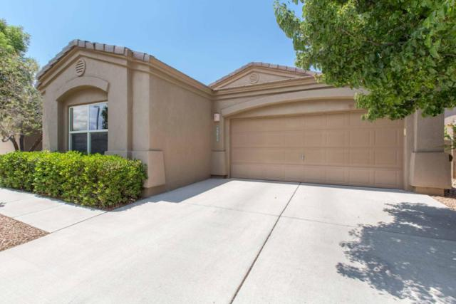 3815 Tundra Swan Court NW, Albuquerque, NM 87120 (MLS #896959) :: Your Casa Team