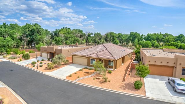 948 Salt Cedar Court, Bernalillo, NM 87004 (MLS #897141) :: Campbell & Campbell Real Estate Services