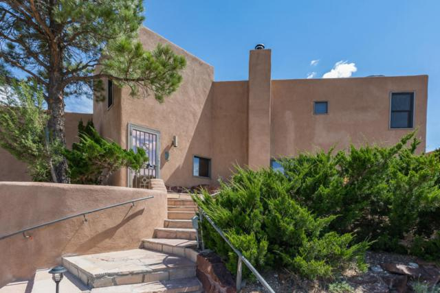 52 Tejon Canon Road, Placitas, NM 87043 (MLS #897182) :: Campbell & Campbell Real Estate Services