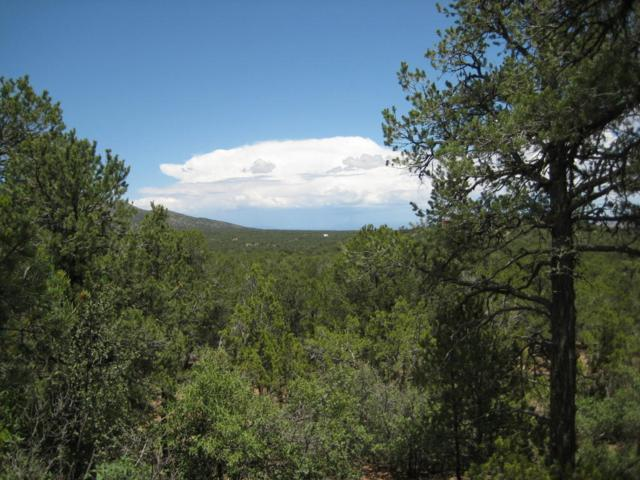 55 Verbina Road, Sandia Park, NM 87047 (MLS #897365) :: Campbell & Campbell Real Estate Services