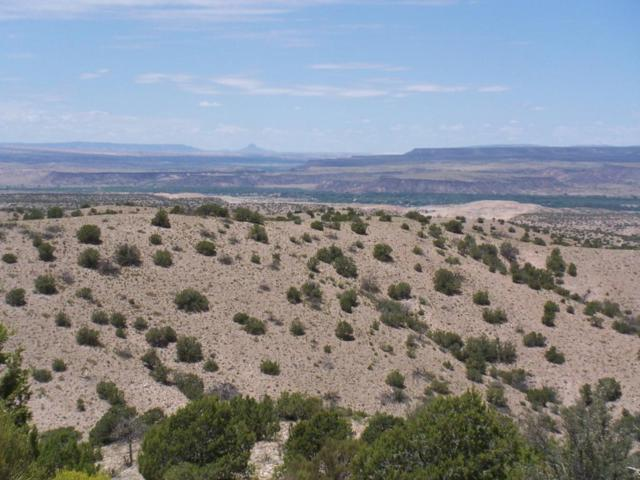 Flying Dog Rd, Placitas, NM 87043 (MLS #897418) :: Campbell & Campbell Real Estate Services
