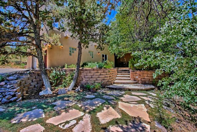 39 Canyon Ridge, Sandia Park, NM 87047 (MLS #897446) :: Campbell & Campbell Real Estate Services