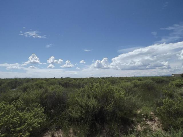 Salt Mission Trail, McIntosh, NM 87032 (MLS #897474) :: Campbell & Campbell Real Estate Services