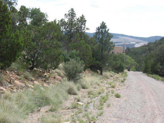 14 Vista Del Cielo Pl, Tijeras, NM 87059 (MLS #897559) :: Campbell & Campbell Real Estate Services
