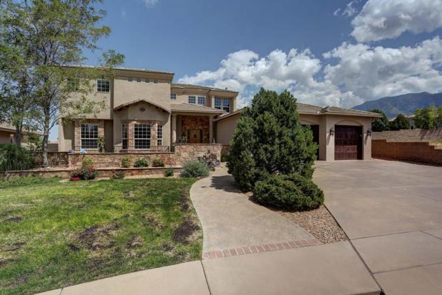 12919 Juniper Canyon Trail NE, Albuquerque, NM 87111 (MLS #897670) :: Rickert Property Group