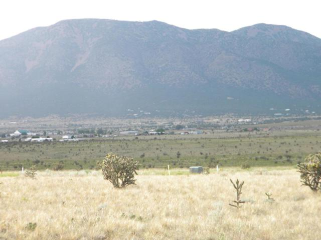 94 High Meadow Loop, Edgewood, NM 87015 (MLS #897702) :: Campbell & Campbell Real Estate Services