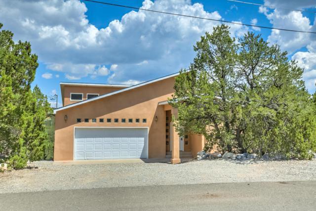 9 Everest Court, Cedar Crest, NM 87008 (MLS #897731) :: Campbell & Campbell Real Estate Services
