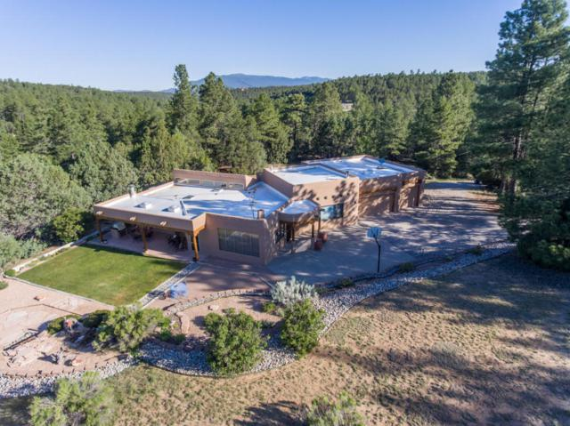 20 Valle Lindo Road, Tijeras, NM 87059 (MLS #897752) :: Campbell & Campbell Real Estate Services