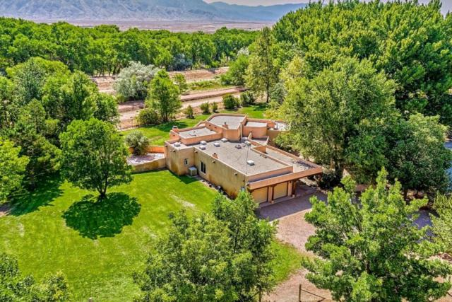 353 Sego Lane, Corrales, NM 87048 (MLS #897839) :: Campbell & Campbell Real Estate Services