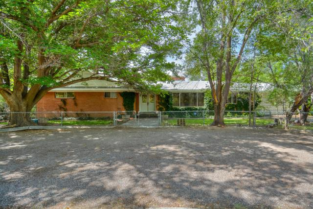 311 Schmidt Place SW, Los Lunas, NM 87031 (MLS #897905) :: Campbell & Campbell Real Estate Services