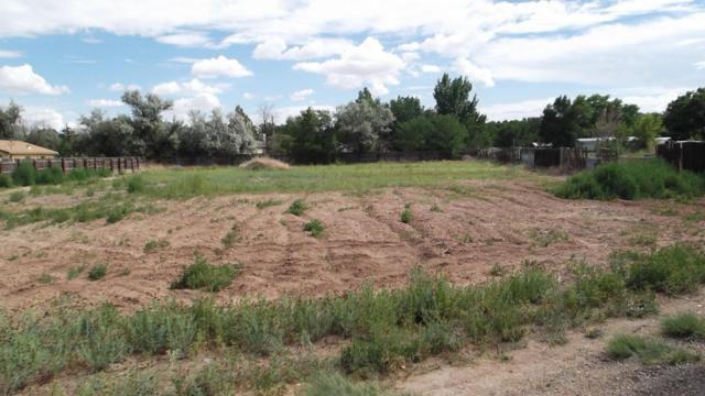 32 NE Blue Hill Road, Los Lunas, NM 87031 (MLS #897960) :: Will Beecher at Keller Williams Realty